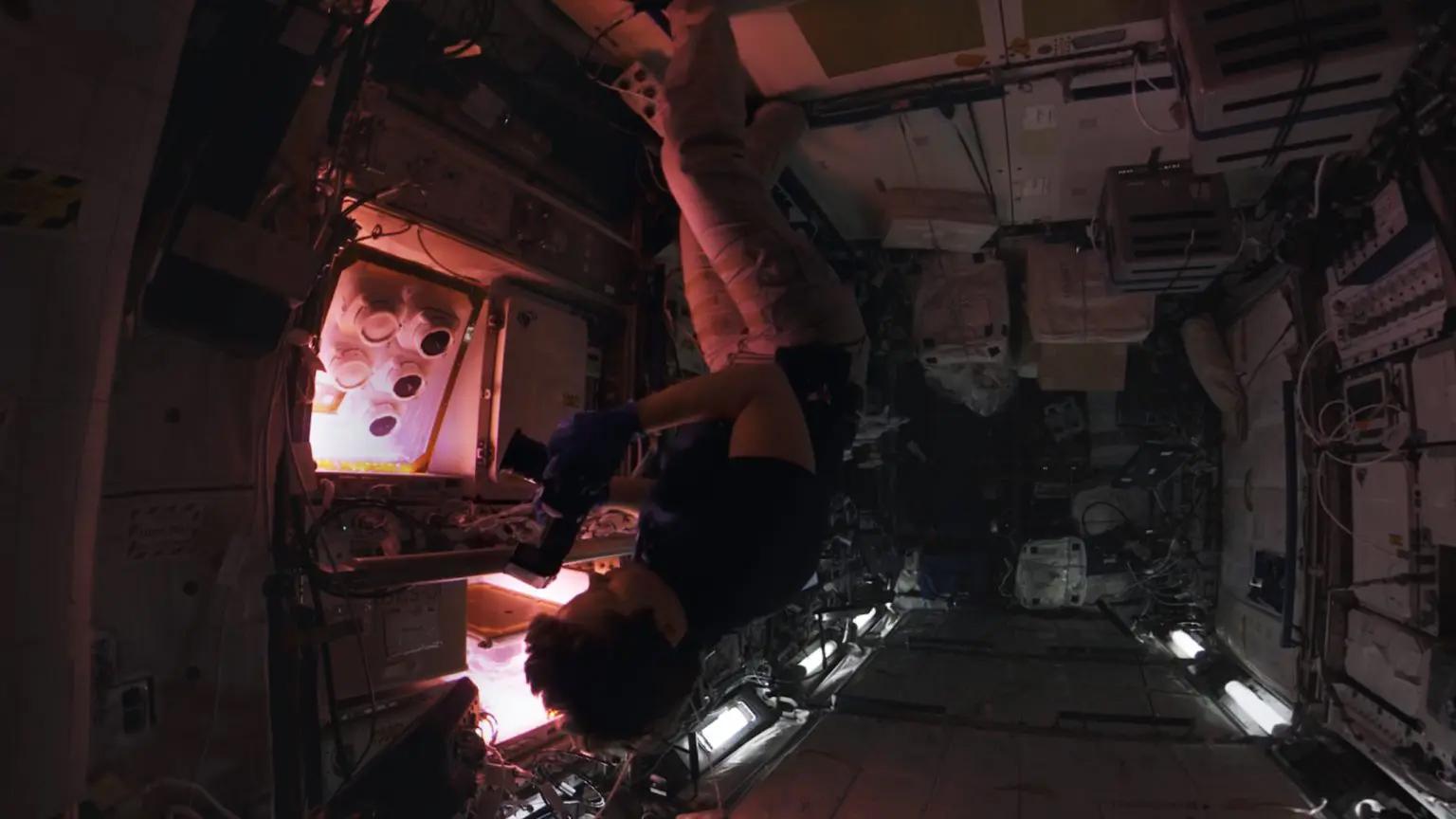 отправиться в космос в виар шлеме
